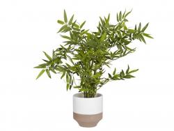 Pot pour plante Beige et blanc