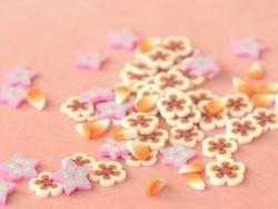 100 Polymer-Clay-Cane-Scheiben - orangefarbene Blumen