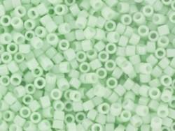 Tube de 1100 rocailles - Miyuki Delicas 11/0 - Menthe pastel 1496