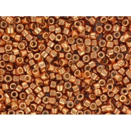 Acheter Miyuki Delicas 11/0 - Duracoat galvanised muscat 1836 - 3,70€ en ligne sur La Petite Epicerie - Loisirs créatifs