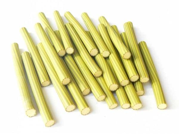 Cane courgette pelée -  - en pâte fimo - modelage  - 1