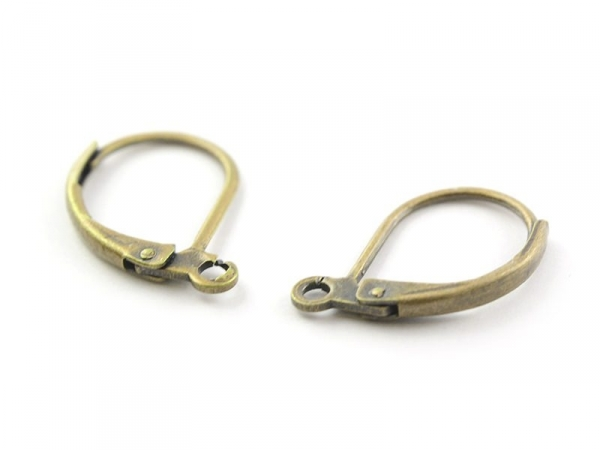 1 pair of bronze lever back earrings