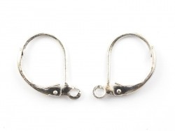 1 pair of silver-coloured lever back earrings