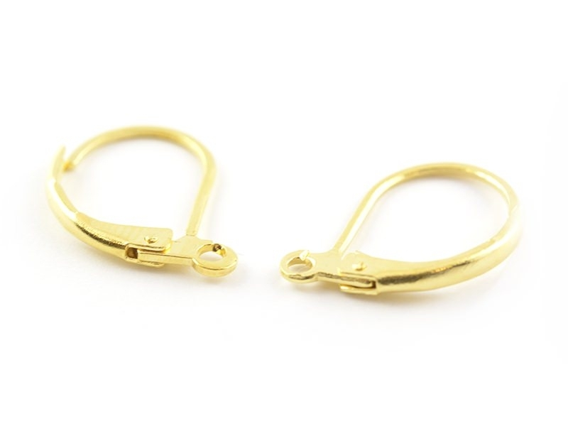1 pair of lever back earrings - golden