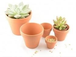 Pot pour plante - 8 cm