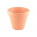 Pot pour plante - 10 cm