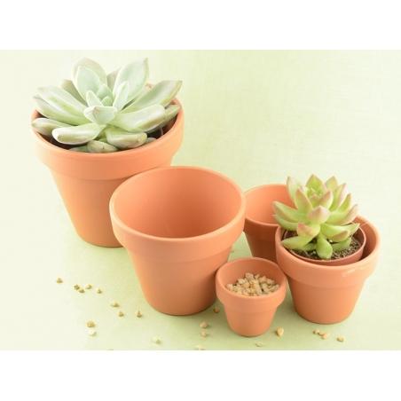Acheter Pot pour plante - 10 cm - 0,99€ en ligne sur La Petite Epicerie - Loisirs créatifs