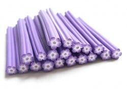 Cane fleur violette et blanche