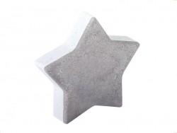 Sternförmige Plastikgießform (11 cm)