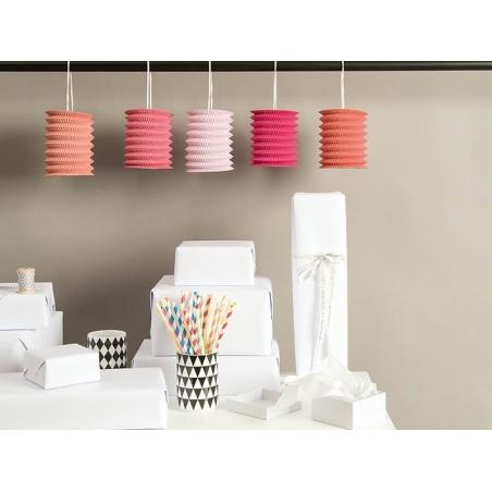 5 lanternes en papier - roses