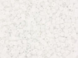 Tube de 1100 rocailles - Miyuki delicas 11/0 - blanc 200