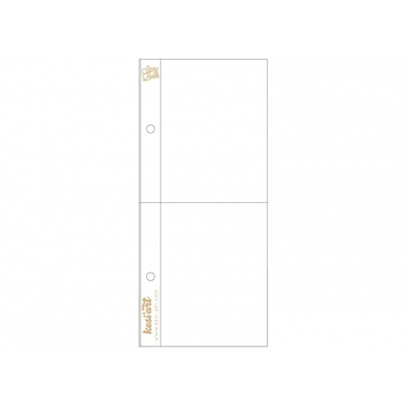 10 page protectors (3 in x 8 in) - 2 compartments