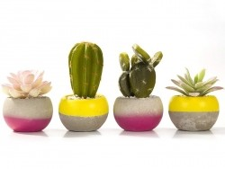 Cactus artificiel Talking tables - 1