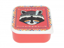 Boite carré hermétique / lunchbox - Raton laveur
