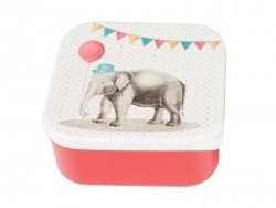 Square air-tight box/lunchbox - Party/elephant