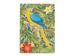 Carnet - Perroquet bleu