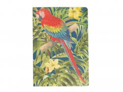Carnet - Perroquet rouge