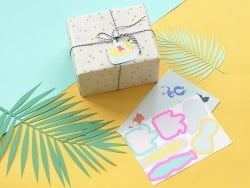 12 gift tags - swimmers