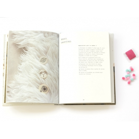 """Book - """"Broches"""" (in French)"""