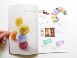 Livre de tutoriel de fimo - Padico (japonais)