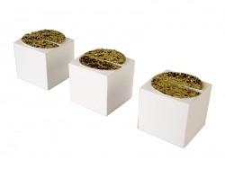 Petites boîtes cadeaux à paillettes
