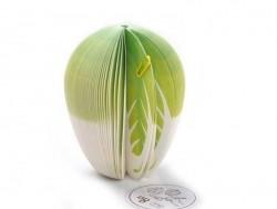 Bloc note en forme de légume - CHOU