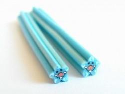 Seesterncane - blau