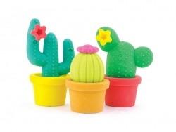 Gommes cactus