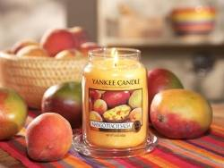 Bougie Yankee Candle - Mango Peach Salsa / Mangue et pêche - Moyenne jarre