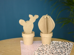 Cactus boule - papier mâché à customiser