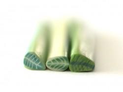 Cane feuille verte claire