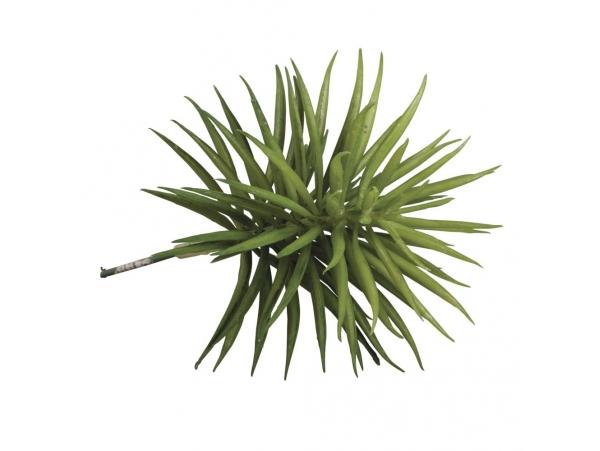 acheter fausse plante succulente senecis en ligne. Black Bedroom Furniture Sets. Home Design Ideas