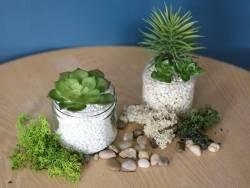 Acheter Plante succulente Echeveria vert - plante artificielle - 3,60€ en ligne sur La Petite Epicerie - Loisirs créatifs