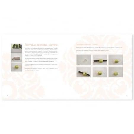 Livre Miniatures en pâte polymère de retour du marché  - 2