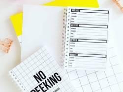 Carnet à mots de passes - No peeking