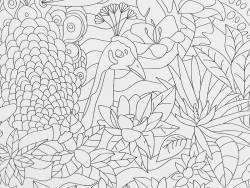 Poster géant à colorier - jardin d'eden