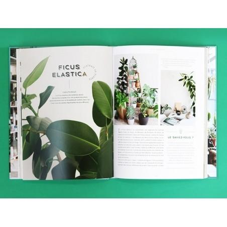 livre urban jungle d corer avec les plantes de igor josifovic et judith de graaf. Black Bedroom Furniture Sets. Home Design Ideas