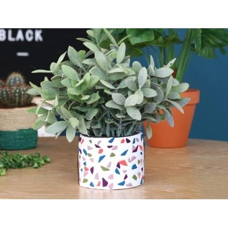 Acheter Pâte Fimo Soft Vert Olive 57 - 1,99€ en ligne sur La Petite Epicerie - 100% Loisirs créatifs
