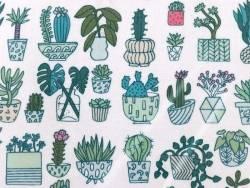 Acheter Toile enduite cactus - 2,49€ en ligne sur La Petite Epicerie - 100% Loisirs créatifs