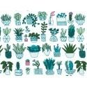 Tissu coton cactus