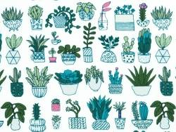 Tissu coton cactus  Rico Design - 1
