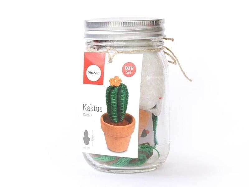 Kit mini cactus en feutrine Rayher - 1