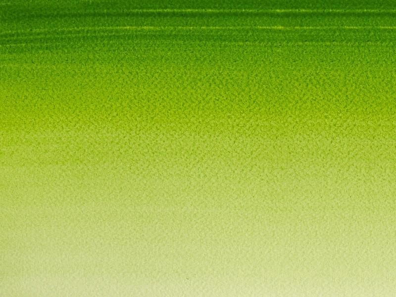 Acheter Aquarelle fine Winsor et Newton - Vert de Vessie - 1/2 godet - 2,19€ en ligne sur La Petite Epicerie - 100% Loisirs ...
