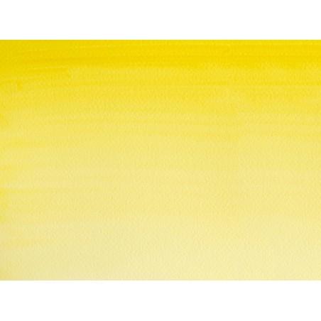 Acheter Aquarelle fine Winsor et Newton - Nuance de Jaune Citron - 1/2 godet - 2,19€ en ligne sur La Petite Epicerie - 100% ...