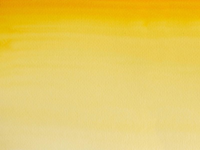 Aquarelle fine Winsor et Newton - Nuance de Gomme Gutte - 1/2 godet Winsor & Newton - 1