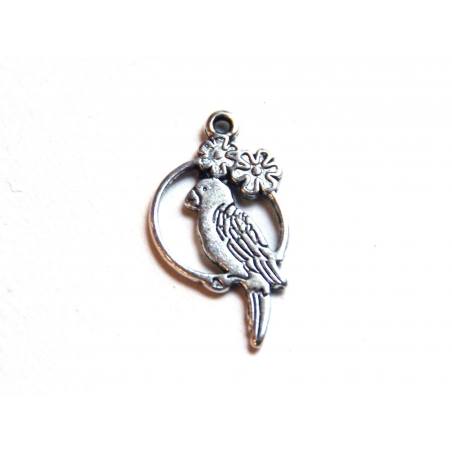 1 parrot charm - silver-coloured