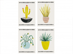 Lot de 8 cartes - Cactus