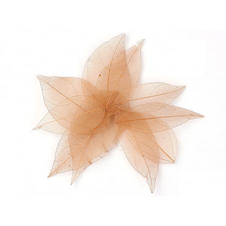 Acheter Lot de 5 feuilles pressées - marron clair - 0,89€ en ligne sur La Petite Epicerie - Loisirs créatifs