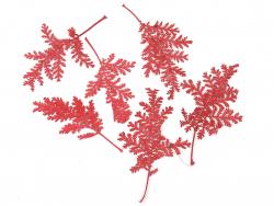 Acheter Planche de 10 feuilles pressées - rouge foncé - 3,79€ en ligne sur La Petite Epicerie - Loisirs créatifs