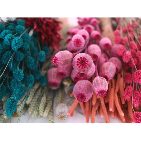 Acheter Brin de Pavot rose - fleur séchée - 0,89€ en ligne sur La Petite Epicerie - Loisirs créatifs